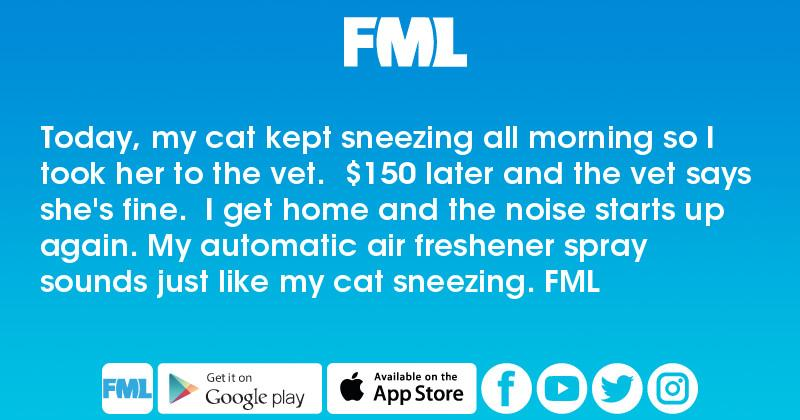 Today, my cat kept sneezing all morning so I took her to the