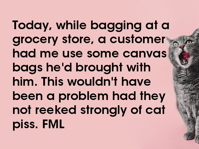FML : Your everyday life stories