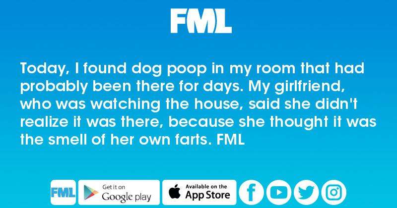 Today, I found dog poop in my room that had probably been there for